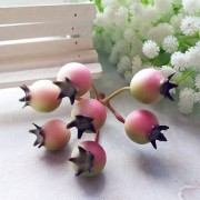 Декоративные ягодки шиповника,розовые