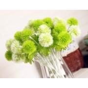 Одуванчик зеленый