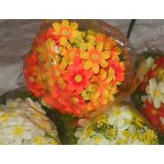 Букет, Ромашки ярко-оранжевые и светло-оранжевые