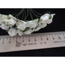 Бумажные розы молочные 12шт