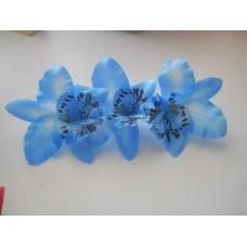 Орхидея Каттлея голубая 7см