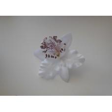 Орхидея Каттлея белая 7см