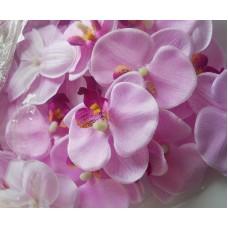 Орхидея нежно-сиреневая